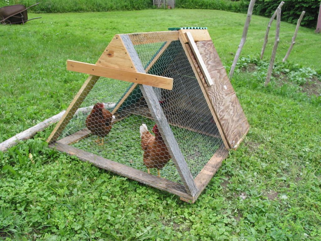 chicken-tractor-2011